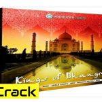 Producer Loops – Kings of bhangra Vol. 2